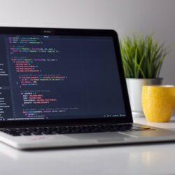 Software udvikling af kompetente designere og programmører